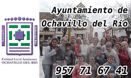 ayuntamiento de ochavillo banner lateral